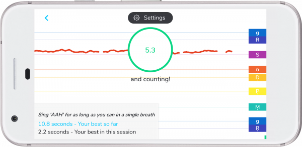 Breath Monitor